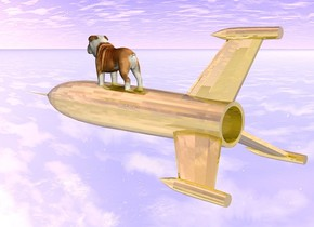 the small gold rocket ship is 6 feet above the ground. it is face down. the dog is -2.5 feet above the rocket ship. it is 7 feet above the ground. it is cloudy. the ground is shiny.