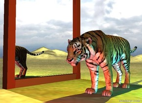 the extremely wide mirror is on the dirt mountain range. it is cloudy. the tiger is three feet to the right of the mirror. the mirror is facing right.  the yellow light is 1 foot above the tiger. a cyan light is a foot right of the tiger. a red light is in front of the tiger.