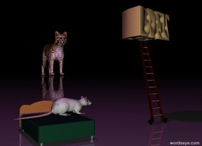 The very tiny bed is a foot to the left of the very tiny ladder. the rat is on the bed. it is facing the ladder. The big cheese is on top of the ladder. it is facing right. it is night.  the ground is shiny. the purple light is 2 feet above the rat.  the enormous cat is 60 feet behind and 20 feet to the right of the ladder.