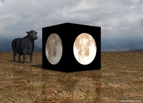 the ground is dirt. the [moon] image is on the huge cube. the cow is several feet to the right of the cube. it is facing the cube.