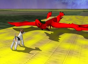 the yellow brick road is on the grass ground. the red dragon is on the road. it is upside down. the road is 80 feet long. the white dog is a few feet in front of the dragon. it is facing the dragon.