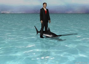 there is a shark. there is a man inside the shark. the ground is water