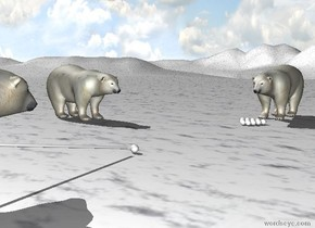 the polar bear. the tall [snow] ground. the 5 tiny spheres are in front of the bear. 4 tiny spheres are in front of the 5 spheres. 3 tiny spheres are in front of the 4 spheres. 2 tiny spheres are in front of the 3 spheres. the [snow] tiny sphere is 8 feet in front of the bear. the cylinder is 2 inches  in front of the [snow] tiny sphere. it is face down. it is 60 inches long and .9 inches wide. it is leaning 10 degrees to the back. it is 2 inches above the ground. another polar bear is 4 feet to the left and 3 feet in front of the polar bear. it is facing right. another polar bear is -2 feet in front of the cylinder. it is facing backwards.