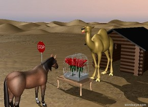The flowers fit inside the big cage. The cage is on top of a table.The camel is behind the cage on the ground. There is a house on the ground behind the camel. There is a horse 2 feet in front of the table. The horse is facing north. There is a sign 4 feet to the left of the table.