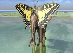 the very enormous butterfly is -4 foot above and -5 feet in front of the elephant. it is facing up. the ground is shiny grass.