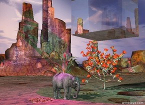 the elephant is 12 feet left of the 20 foot tall succulent.  the 8 foot tall flower plant is 2 feet in the elephant.  the cyan light is ten feet in front of the plant. it is 20 feet right of the plant. the magenta light is left of the elephant. it is above the elephant.  The humongous transparent cube is 2 feet above the succulent.  the ground is  tall.