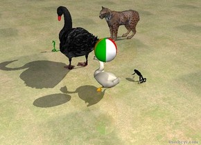the tiny green snake is several inches in front of the large bird. snake is facing right. the ground is grass. the cat is 4 feet to the left of the snake. the cat is facing right. a swan is behind the bird. a small beach ball is above the swan. a large frog is 2 feet to the left of the swan.