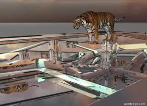 The tiger is on top of the reflective pool