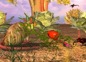 a giant carrot.a large fur rat is -15 inches left of the carrot.the rat is facing northeast.three giant cabbages are 6 inches behind the carrot.the ground is dirt.a tree is 20 feet behind the cabbages.a orange light is right of the rat.a large bush is -9 feet right of the tree.a red light is in front of the bush.the sun is pink.a large beetle is right of the carrot.the beetle is facing southwest.a humongous dragonfly is above the bush.the dragonfly is facing left.a giant grass is in front of the rat.a giant worm is left of the beetle.
