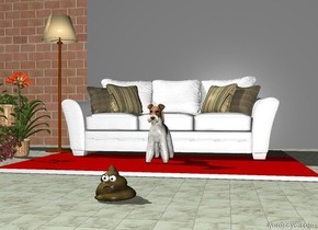 The dog is in front of a white sofa. The sofa is on a carpet. The dog is on a carpet. The carpet is red. The ground is a tile. The dog is in front of the sofa. There is grey wall one foot behind the sofa. There is a wall left of the wall.There is a grey wall right of the wall. There is a lamp left of the sofa. There are three flower plants left of the carpet. There is a poop two feet in front of the carpet.