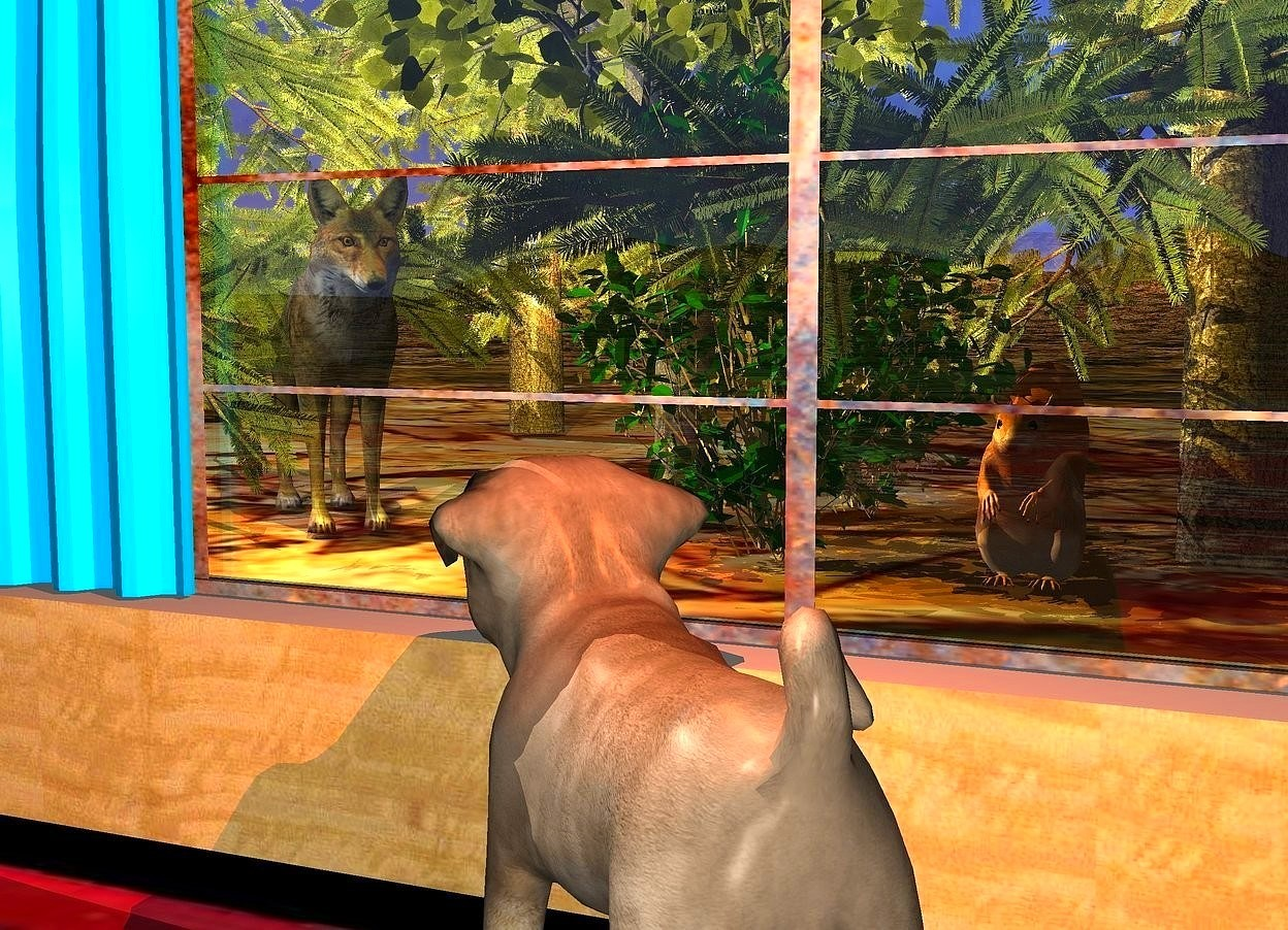 Input text: a big dog is facing northwest. a 30 foot wide and 1 foot high wood wall is behind the dog. it is 1 inch in the ground. the ground is [leaf]. a 30 foot wide [rug] floor is 0 inches in front of the wall. the dog is 0 inches over the floor.   a 4 foot tall and 10 foot wide [metal] window is 0 inches above the wall. a wolf is 5 feet behind the wall. it is 4 feet to the left of the dog. it is facing southeast. a cream light is in front of the wolf. the light is 2 feet over the ground. a 1st small tree is -6 feet to left of and .5 foot behind the wolf. a 2nd small tree is -4 feet to the left of  the wolf. a 3rd small tree is -6 feet to the right of and -3 feet in front of the 1st tree. a 4th small tree is -8 feet to the right of the 3rd tree. 2 witch hazels are -6 feet to the left of the 4th tree. a large squirrel is to the right of the witch hazels. a lemon light is 1 inch in front of and 0 inches to the right of the wolf. the light is 4 feet over the ground. an cream light is 1 inch in front of the squirrel. a copper light is 1 inch over the dog. a curtain is 0 inches in front of  and -3 feet to the left of the window.