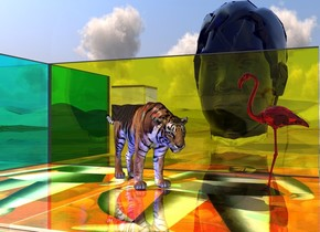 The large tiger is on the shiny malevich  mat. the tiger is facing southeast. a cyan light is a foot above the tiger. it is left of the tiger. a red light is above the cyan light. a blue light is in front of the tiger. a yellow glass wall is behind the tiger. a cyan glass wall is left of the yellow wall. it is facing right.  a 6 foot tall red glass flamingo is a foot right of the tiger.  it is facing west. the ground is shiny. the sky is shiny.   a 20 foot tall blue glass head is 20 feet behind the tiger. a large glass cube is a foot in the tiger.