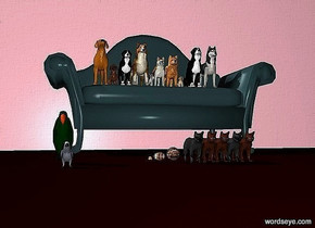 . the ground is [carpet]. 10 little dogs are on a couch. There are 5  small cats 2 feet in front of the couch. there are 3 tiny balls of yarn 2 feet in front of the couch. there are 2 small parrots  2 feet to the left of the cats on the ground. behind the couch is a pink wall.
