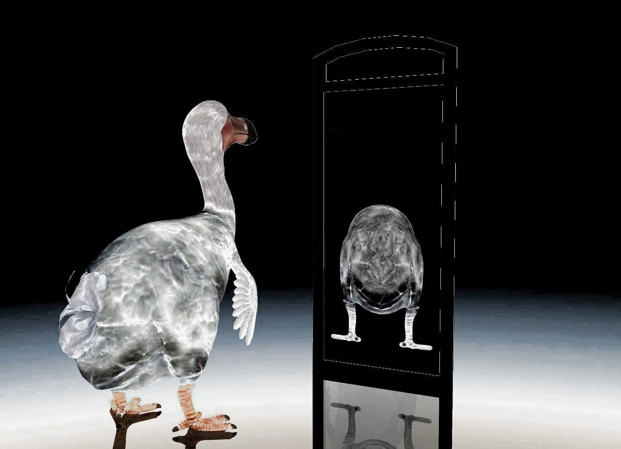 Input text: a 25 feet tall black mirror. it leans 0 degrees to the front. the pane of the mirror is dull white. a 17 feet tall flat 1st dodo is -0.388 feet  in front of the mirror. it is 2.45 feet above the ground. it is facing north. it is dull gray. a 20 feet tall 2nd dodo is 5 feet in front of and -3 feet left of the mirror. it is facing north. the ground is clear. the sky is white. the camera light is black. it is dusk. the ambient light is white.