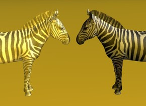a zebra is facing a golden zebra. The golden zebra is facing the zebra. The camera light is golden. the sky is golden. the ground is golden. The zebra is 5 inch from the zebra and 20 feet above the ground. The golden zebra is 20 feet above the ground.