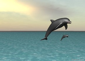 There is the sea. the dolphin is 6 feet above sea. There is a very small dolphin under dolphin.
