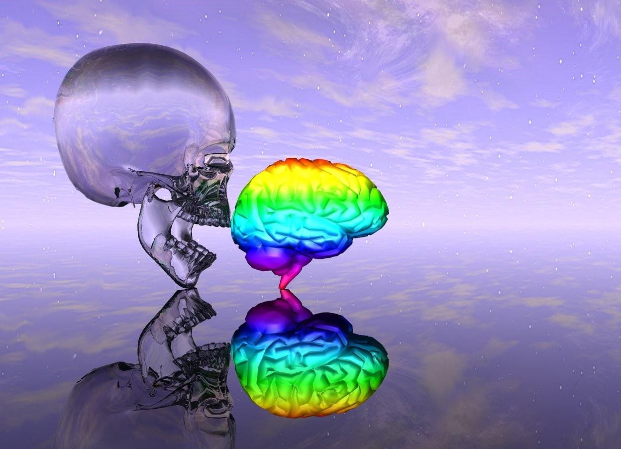Input text: clear skull behind small rainbow brain.  clear ground.