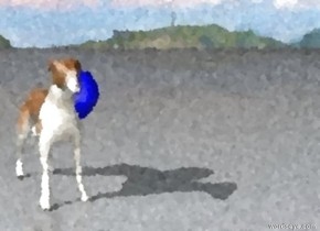 the dog is next to a balloon