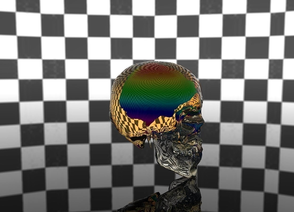 Input text: the rainbow brain is 1 foot in the big clear skull.  invisible ground.  checkerboard sky.