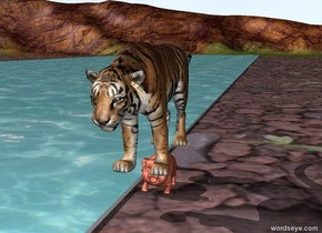 A tiger on the bank of a river through a canyon