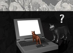 There is a kitten. The kitten is on a huge computer. The kitten is facing backwards. The ground is black. The Sky is ice. There is a question mark above the large house cat. The large house cat is facing the kitten.