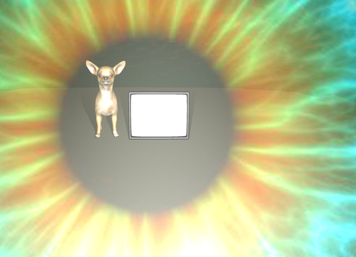 Input text: There is a enormous reflective eye. it is evening. There is a tiny tv 3 feet in front of the eye. the tv is facing the eye. There is a dog next to the tv. the dog is facing the eye. the ground is unreflective.