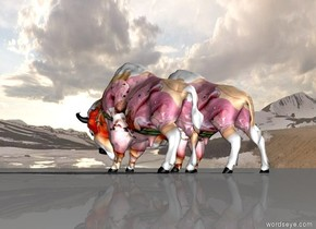 [pig]  american bison