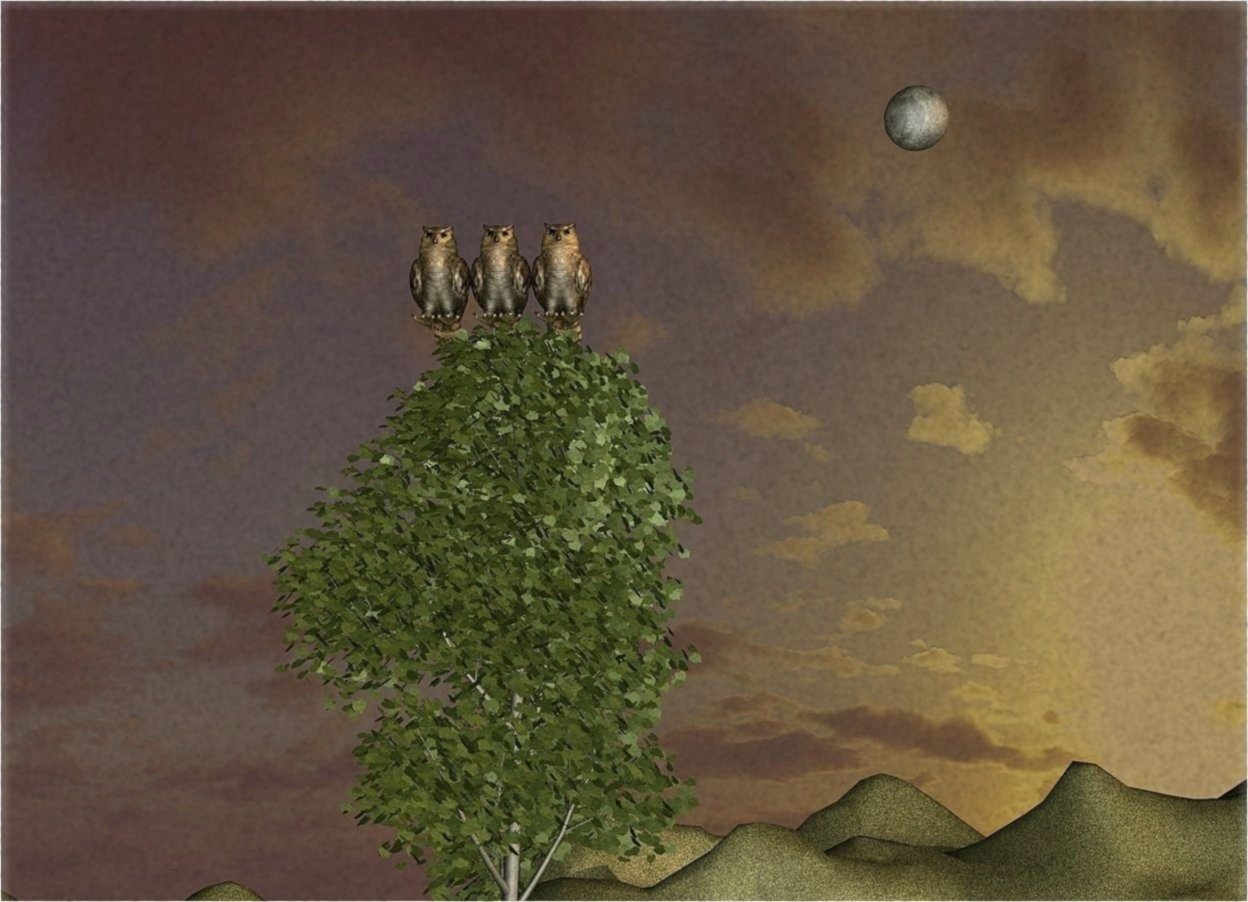 Input text: There are three huge owls on a tree. It is dawn. the ground is grass. the enormous moon is 130 feet above the ground. the enormous moon is 30 feet to the right of the tree. the enormous moon is 100 feet behind the tree.