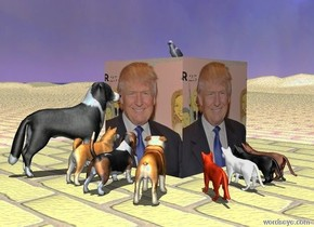[trump]cube.a akita inu is 1 feet  in front of the cube.the cube is 4 feet tall.the akita inu is facing the cube.a basset hound is right of the akita inu.the basset hound is facing the cube.a border collie is left of the akita inu.the border collie is facing the cube.a bulldog is right of the basset hound.the bulldog is facing the cube.a cat is 1 feet right of the cube.the cat is facing the cube.a house cat is in front of the cat.the house cat is facing the cube.the house cat is black.a white cat is in front of the house cat.the white cat is facing the cube.the sun's altitude is 90 degrees.a rust cat is in front of the white cat.the rust cat is facing the cube.the ground is brick.a parrot is on the cube.a violet light is above the parrot.