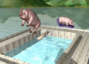 There is a diving board on the stone pool. the large pig is above and -2 feet in front of the diving board. it is leaning 40 degrees to the back. the water rectangle is 2 feet in the pool. it is 18 feet long and 10 feet wide. it is 18 feet deep. the mauve chair is behind the pool. it is -1 foot above the pool. it is facing right. a second large pig is 3 feet in the chair. it is facing right.