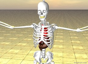 the tooth of the skeleton is gold. the red heart is 1.5 feet in the skeleton. the liver is below the heart. the stomach is -5 inches below the liver. the yellow light is 2 feet above the skeleton. the ground is slate. the brain is in the skull of the skeleton.