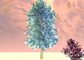 The ground is silver sand. There is an extremely giant purple flower. There is a yellow light 23 feet in front of the flower. There is a huge blue gray tree 35 feet behind and 4 feet to the left of the flower.