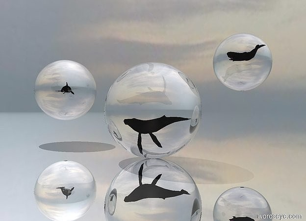 Input text: The ground is reflective silver. There is an extremely large clear sphere.  The extremely tiny whale is 4.8 feet in the sphere .  There is a second extremely large clear sphere 10 feet to the left of the sphere. The second sphere is 2 feet above the ground. The second extremely tiny whale is 3.3 feet in the second sphere. It is facing east. The third extremely large clear sphere is 2 feet to the right of  and 10 feet behind the sphere. The third sphere is 5 feet above the ground. The third extremely tiny whale is 2.9 feet in the third sphere.
