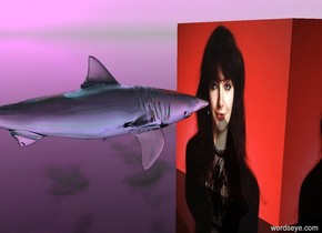 the [katebush] cube. the ground is transparent. the sky is purple and cloudy. the shark is 1 inch to the left of the cube. the shark is 6 inches tall. the shark is transparent. the shark is turquoise. shark is 4 inches above the ground. shark is facing the cube.