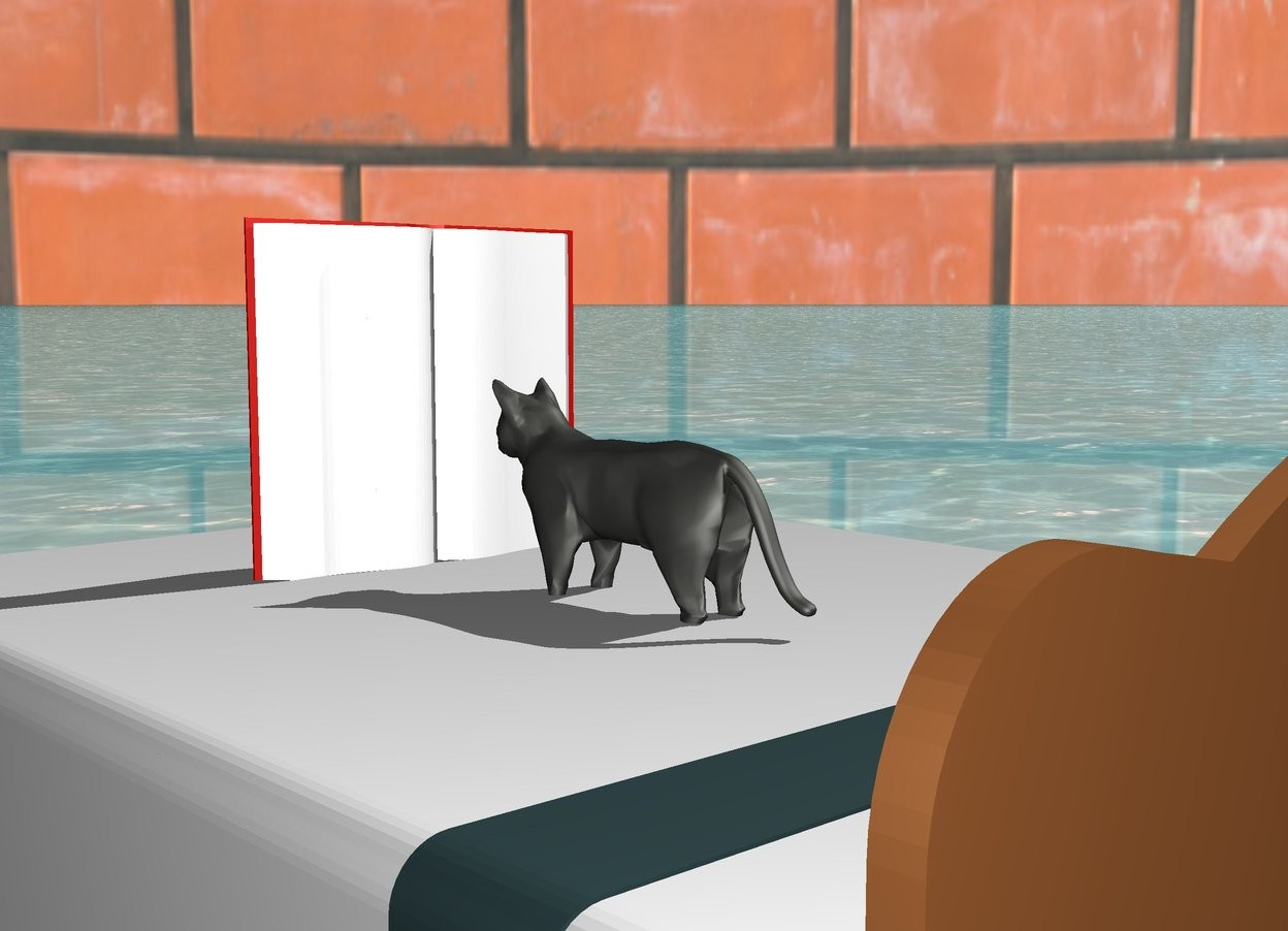 Input text: cliff gray cat 2 inches in white bed.  water ground.  [brick] sky.   big book is 6 inches in front of cat.  book is facing cat.