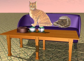 There are two cats on a couch.  there is a table in front of the couch. the table is facing west. large cup on the table. 2nd large cup is next to the cup. large cookie is next to the cup. chocolate cake is next to the cup. the ground is tile.