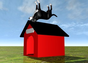 a red dog house. the ground is grass. there is a dog on top of the dog house. the dog is upside down.