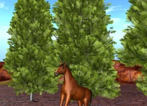 There is a horse leaning back. There are 4 trees behind the horse.