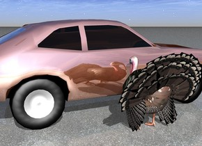 the turkey is next to the shiny car.  it is facing the car.  the ground is asphalt.