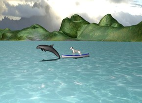 There is dog in a boat on the ocean. Dolphin jump in front of boat.