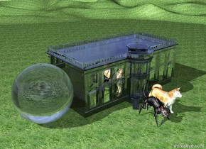 There is huge shiny dog. Ground is grass. There is huge cat next to the dog. Behind the dog is tiny transparent white house. House is facing towards dog. There is extremely huge transparent sphere next to the house.
