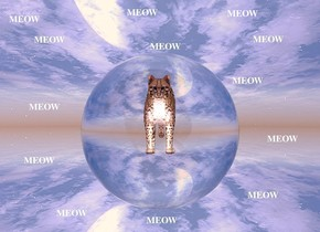 There is an enormous clear sphere.A  4 foot tall cat is 6 feet  inside the sphere. The sphere is fifty feet above the ground.The ground is silver. There is a big white light in front of the cat.the light is facing the cat. the ambient light is pink. It is dawn. The cat is facing south.