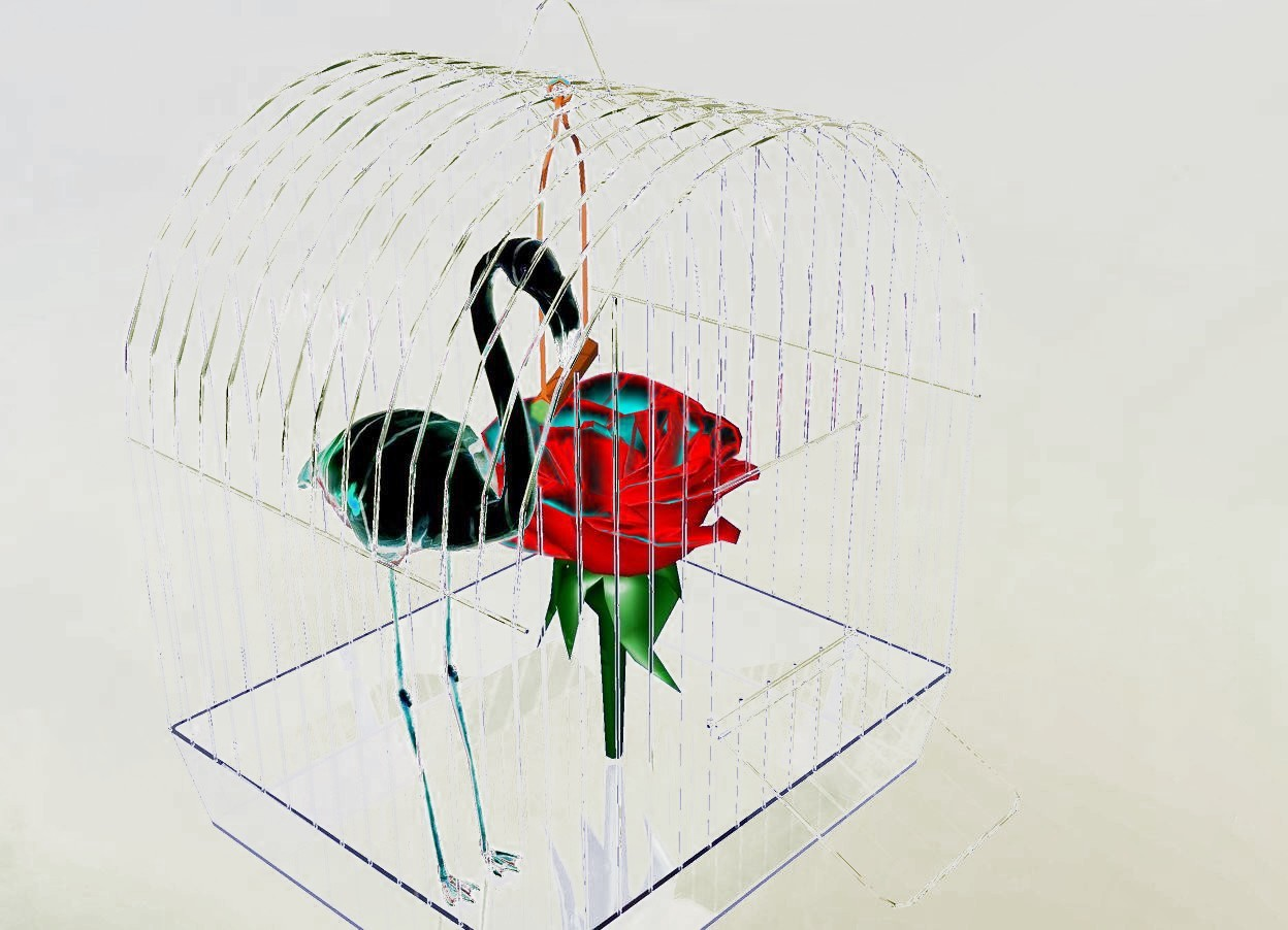 Input text: the shiny bird fits in the clear cage. the flower is in the cage. the ground is invisible.