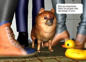 the woman is to the left of the pomeranian. she is facing the pomeranian. the man is behind the pomeranian. the girl is to the right of the pomeranian. she is facing left. the tile wall is behind the man. the ground is texture. the small duck is -1 inch in front and -2 inches to the right of the pomeranian. it faces northwest.