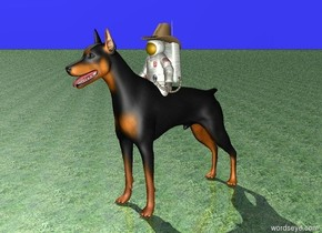 The small astronaut is one foot in the six foot tall doberman. The cowboy hat is one foot in and of the astronaut. The ground is grass. The sky is bright blue.