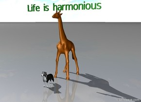 "A giraffe. A dog sits in front of giraffe. Above them is green ""Life is harmonious""."
