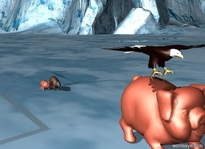 a bald eagle sits on a huge piggy bank. a beaver is far behind the piggy bank. There is a piggy bank next to the beaver.