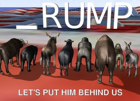 """The very huge """"T"""" is to the left of the very huge """"RUMP"""". The 12 animals are 50 feet in front of the """"RUMP"""". They are facing backwards. The """"T"""" is face down. The [flag] texture is on the ground. The texture is 100 feet tall."""