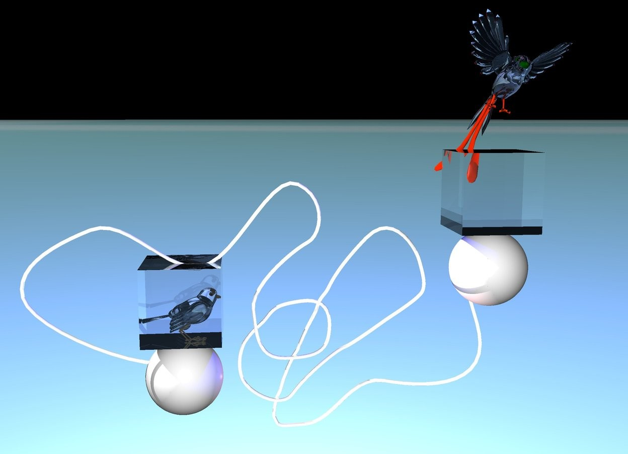 Input text: A shiny white rope is 30 inches above the ground. The ground is 5 feet tall. The sky is 1 feet tall. The ground is [poly3]. The rope is facing up. A navy light above the rope. A pink light behind the rope. A 1st sphere -7 inches in front of the rope. The sphere is 33 inches above the ground. The sphere is -30 inches to the left. A 2nd sphere -4 inches in front of the rope. The sphere is 50 inches above the ground. The sphere is -7 inches to the right. A orange light 2 inches above the sphere. A big translucent pink sparrow above the 1st sphere. The sparrow is facing east. A clear cube -10 inches in front of the sparrow.A translucent pink big bird is 5 inches above the 2nd sphere. the bird is facing south. the bird is leaning 20 degrees to the left. A navy light on the bird. A 2nd clear cube -7 inches under the bird.