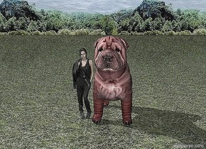 A garden.. A very large red dog. A small woman is next to the dog. It is dawn